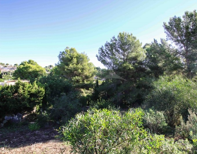 165961-BARGAIN! PLOT IN BALADRAR-01