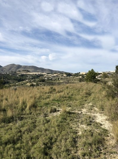 209661-Plot for sale in Benissa-01