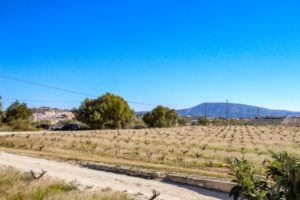 212988-Plot for sale in Teulada-01